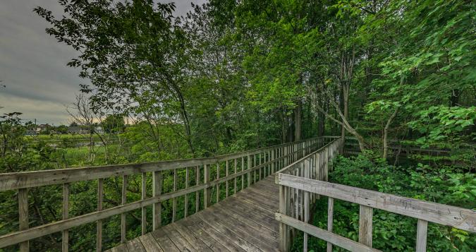 360-centre-nature-farnham